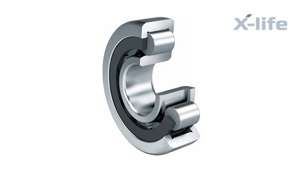Schaeffler rolling bearings and plain bearings: Cylindrical roller bearing with cage